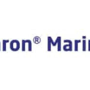 logo imron marine fantasy color online